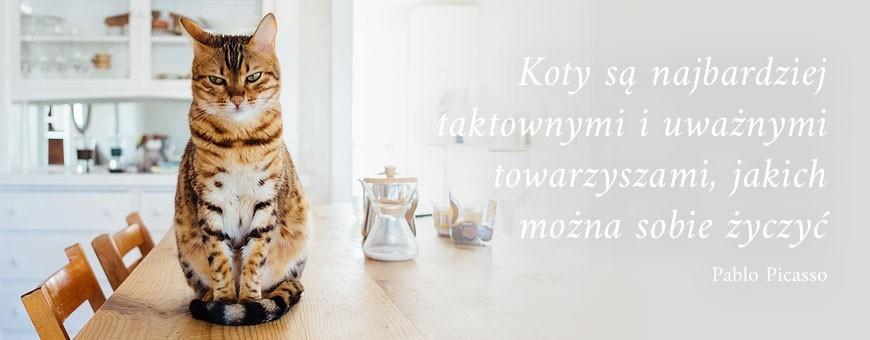 Dla kota | Sklep Najlepszy Przyjaciel
