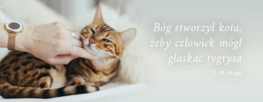 Sucha karma dla kota | Sklep Najlepszy Przyjaciel