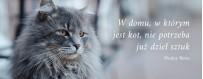 Akcesoria dla kota | Sklep Najlepszy Przyjaciel